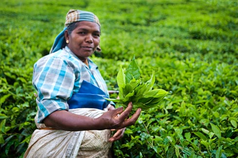 grants startup organic farmers women